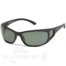 Очки солнцезащитные FL20005 B
